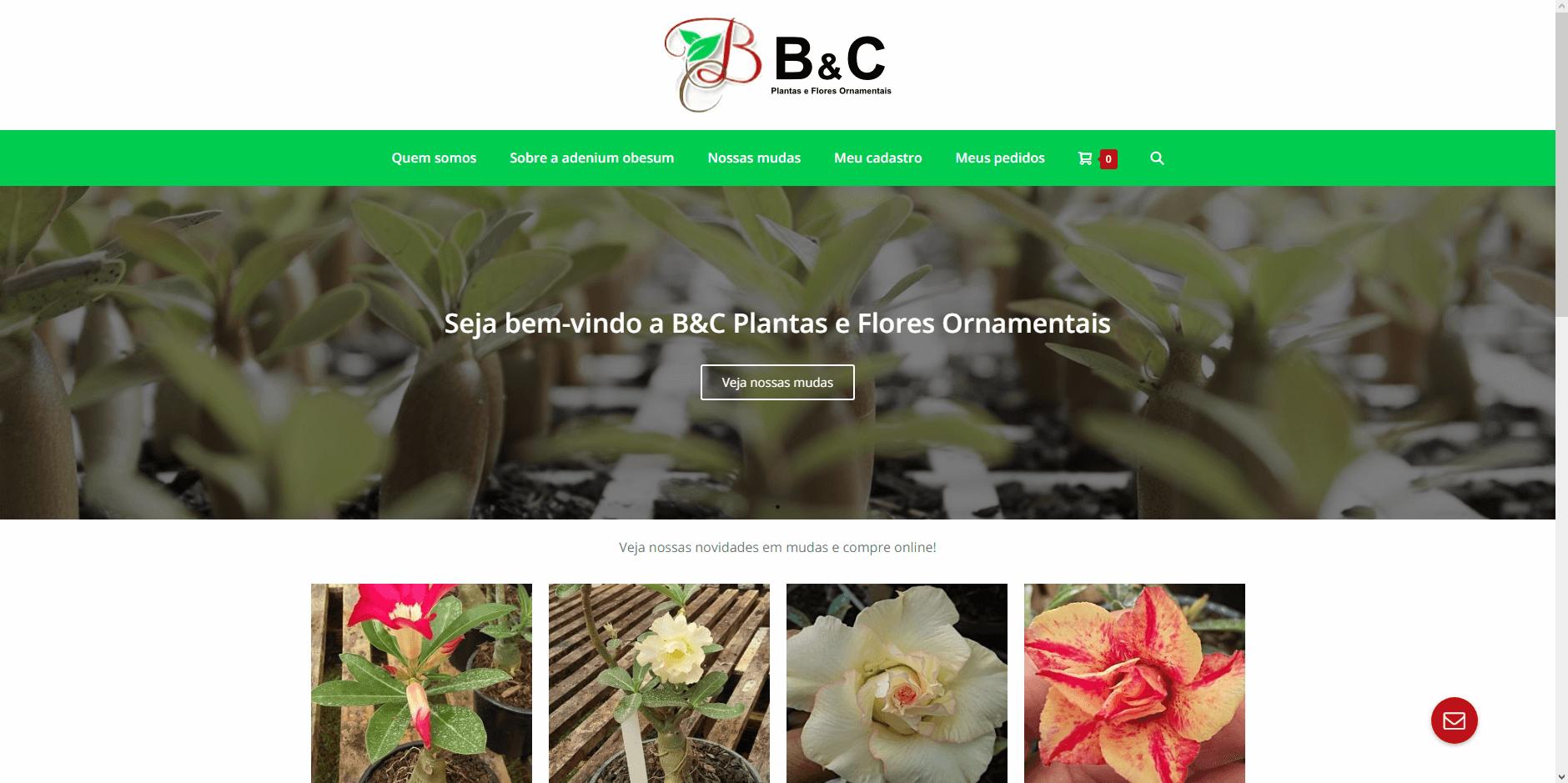 Read more about the article B&C Plantas e Flores Ornamentais